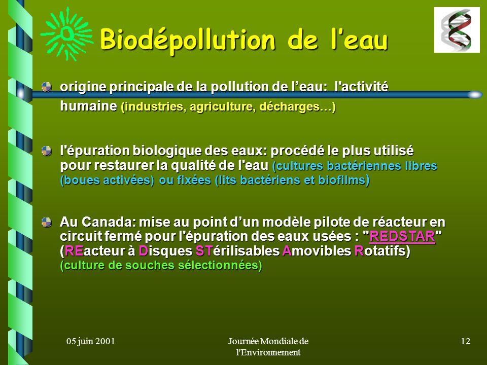 Biodépollution de l'eau