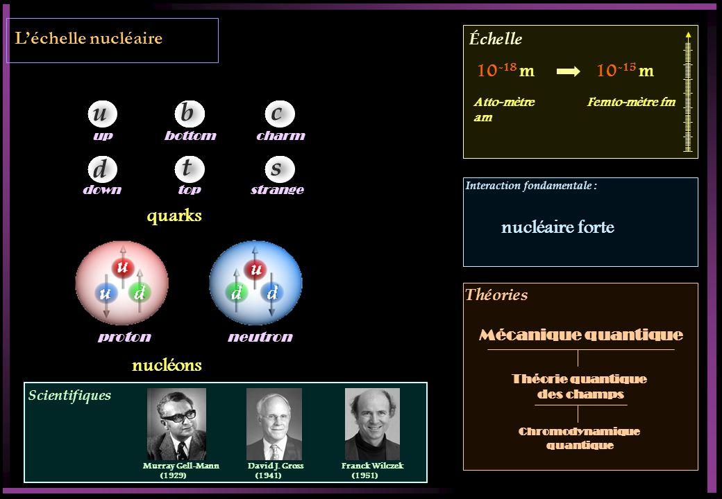 u b c d t s L'échelle nucléaire 10-18 m 10-15 m quarks nucléaire forte
