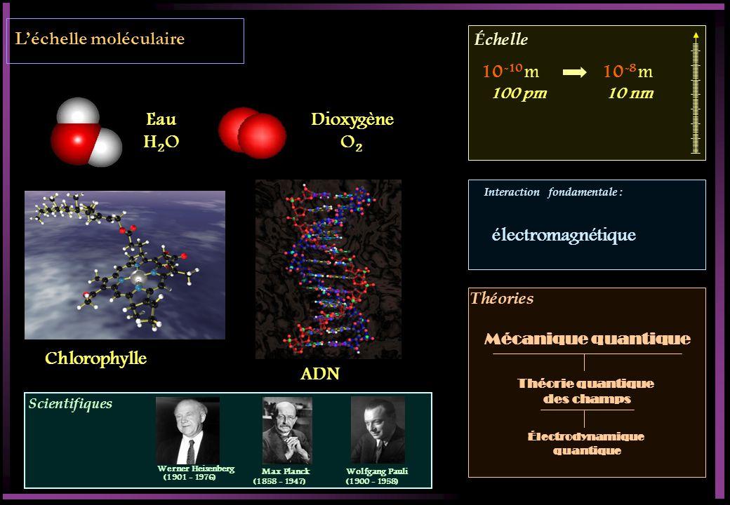 L'échelle moléculaire