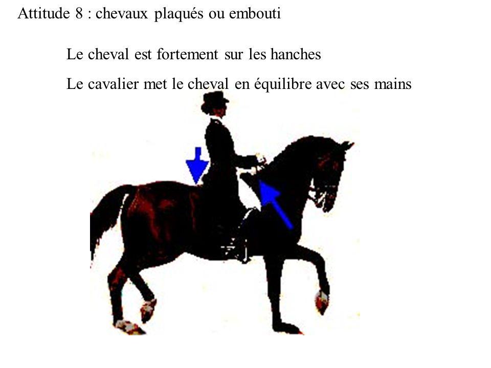 Attitude 8 : chevaux plaqués ou embouti