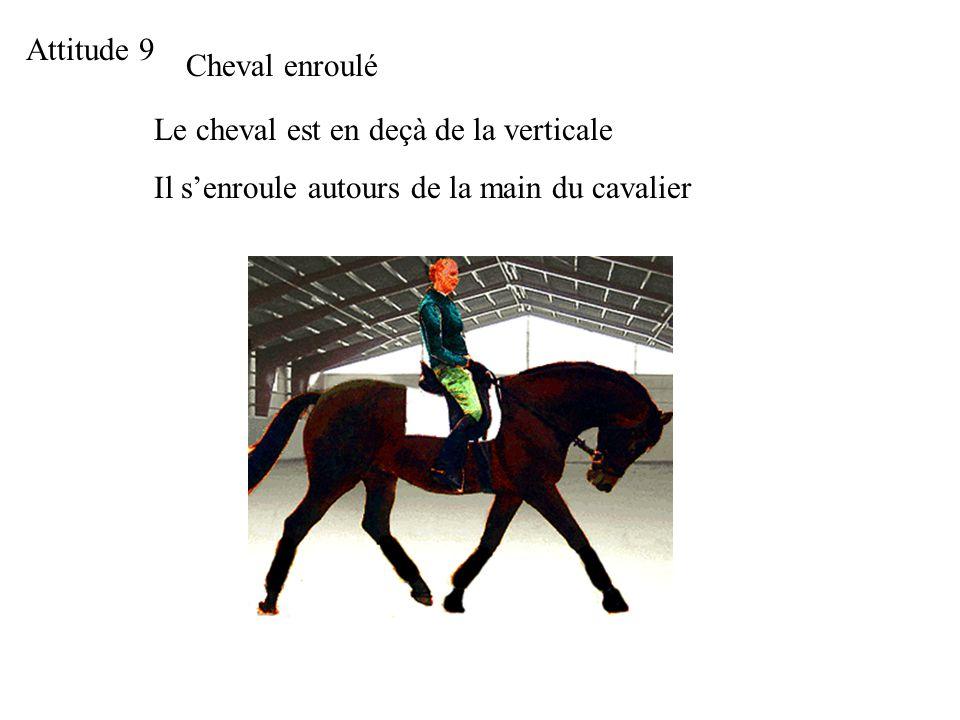 Attitude 9 Cheval enroulé. Le cheval est en deçà de la verticale.