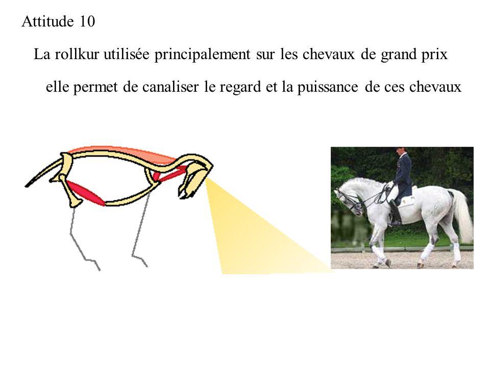 Attitude 10 La rollkur utilisée principalement sur les chevaux de grand prix.