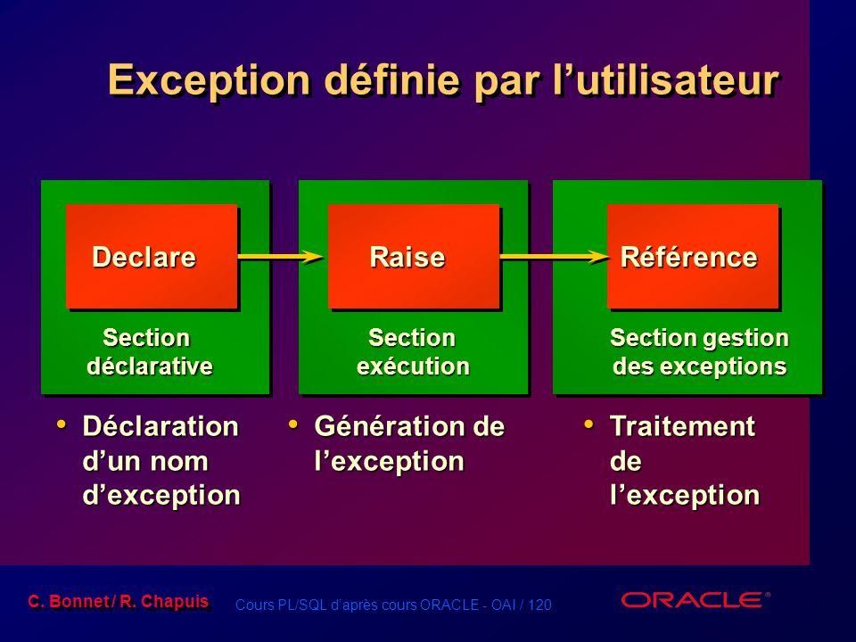 Exception définie par l'utilisateur