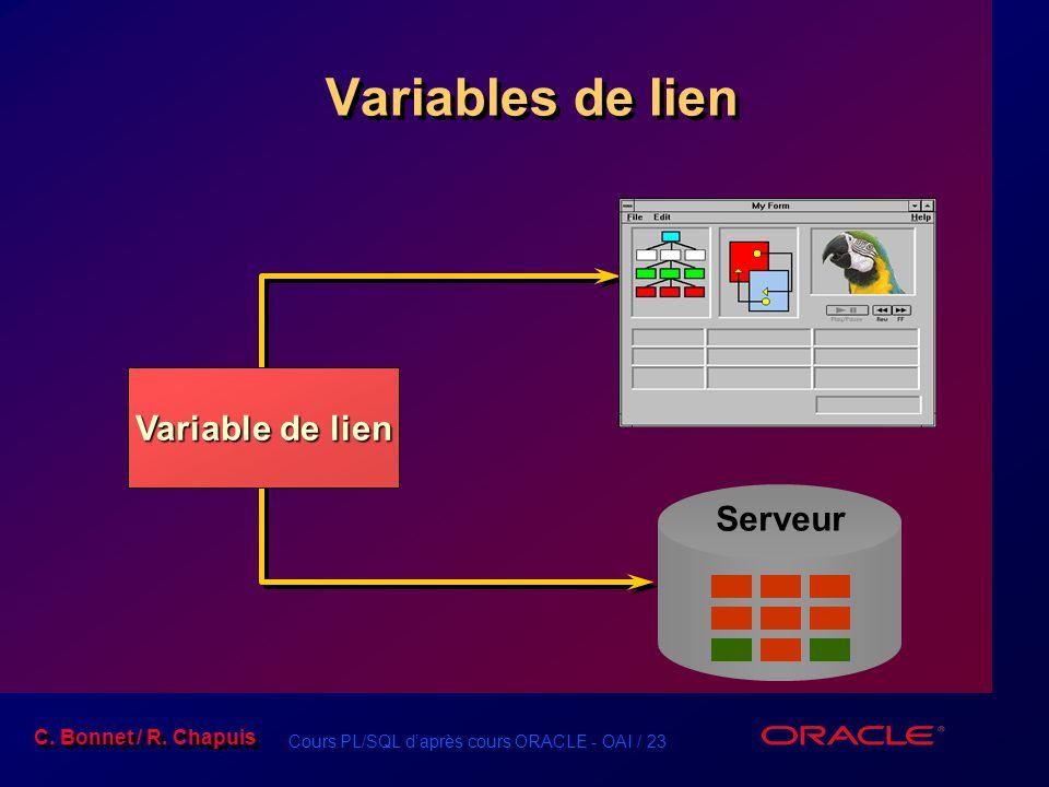 Variables de lien Variable de lien Serveur
