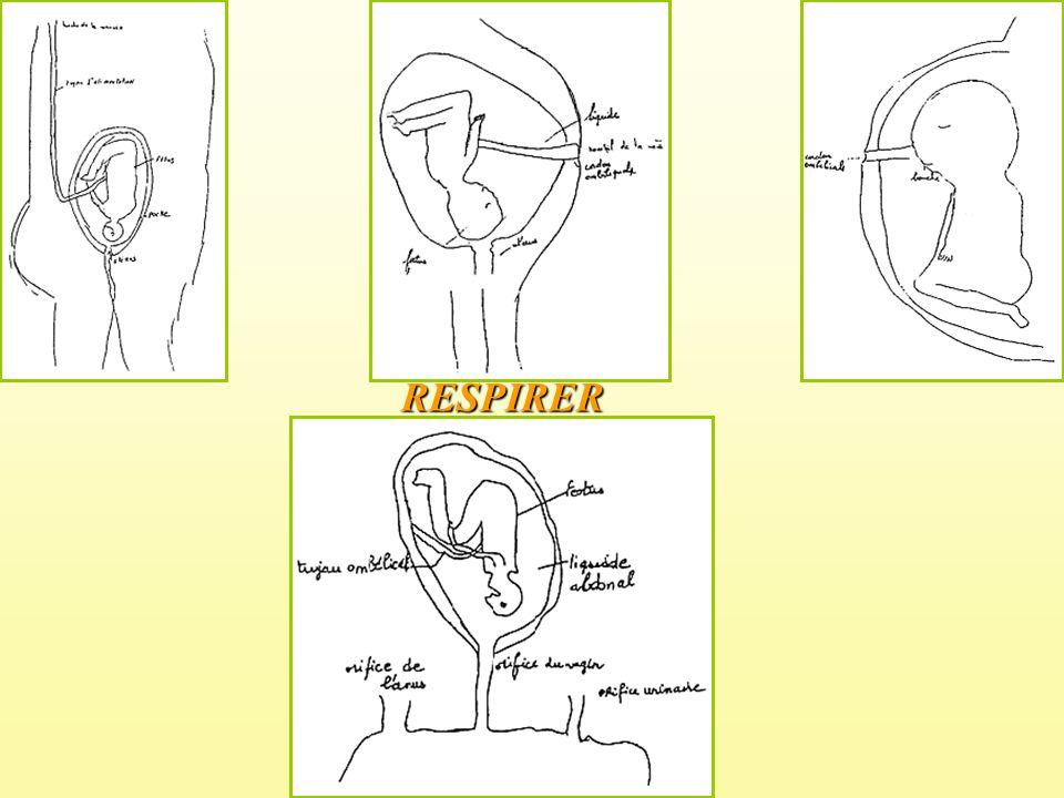 RESPIRER
