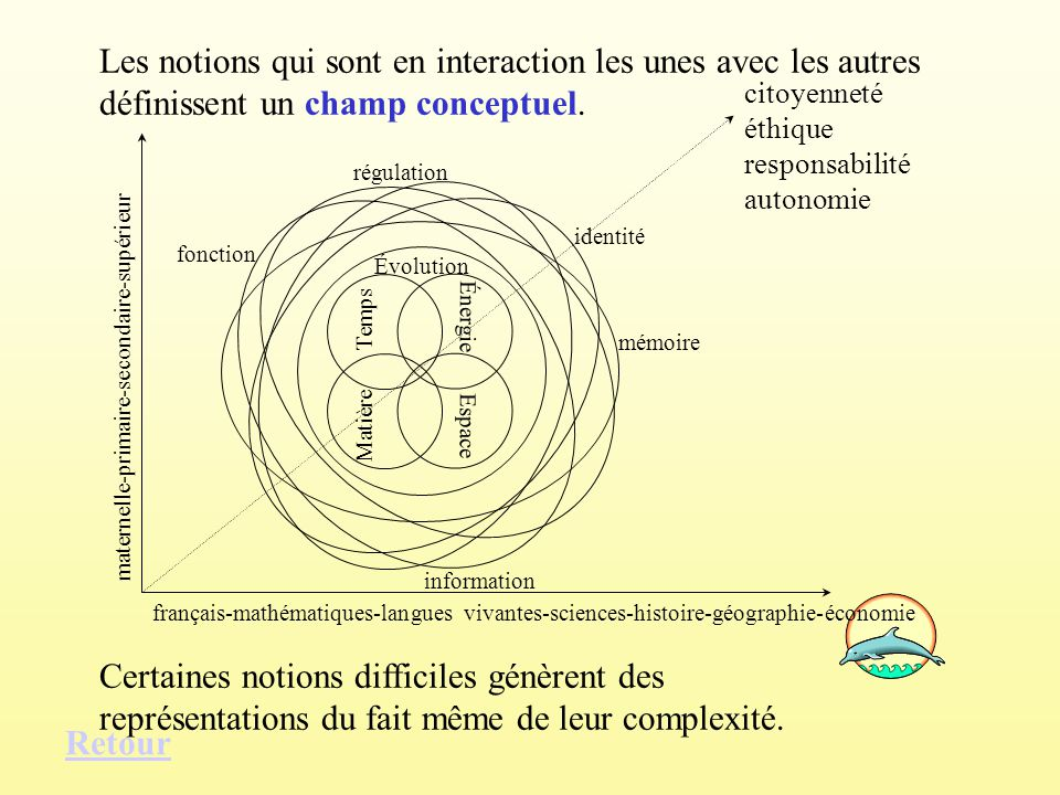 Les notions qui sont en interaction les unes avec les autres définissent un champ conceptuel.