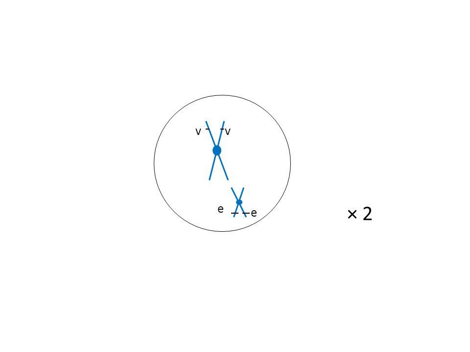 v e × 2
