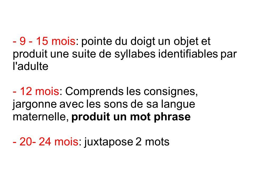 - 9 - 15 mois: pointe du doigt un objet et produit une suite de syllabes identifiables par l adulte