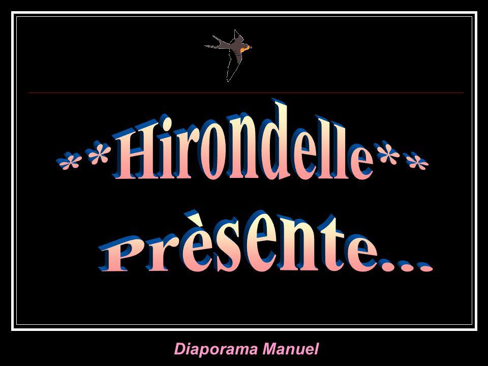 **Hirondelle** Prèsente...