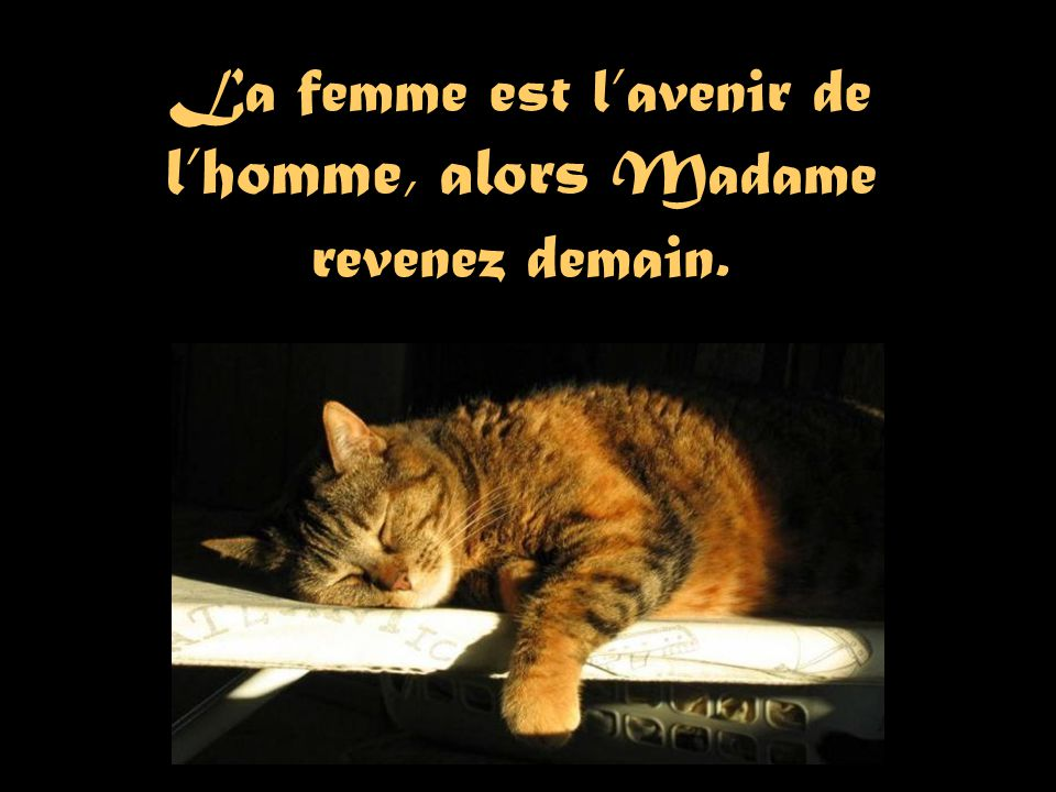 La femme est l'avenir de l'homme, alors Madame revenez demain.