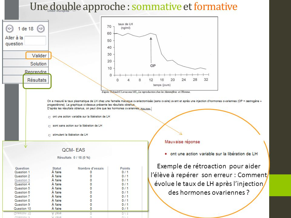 Une double approche : sommative et formative