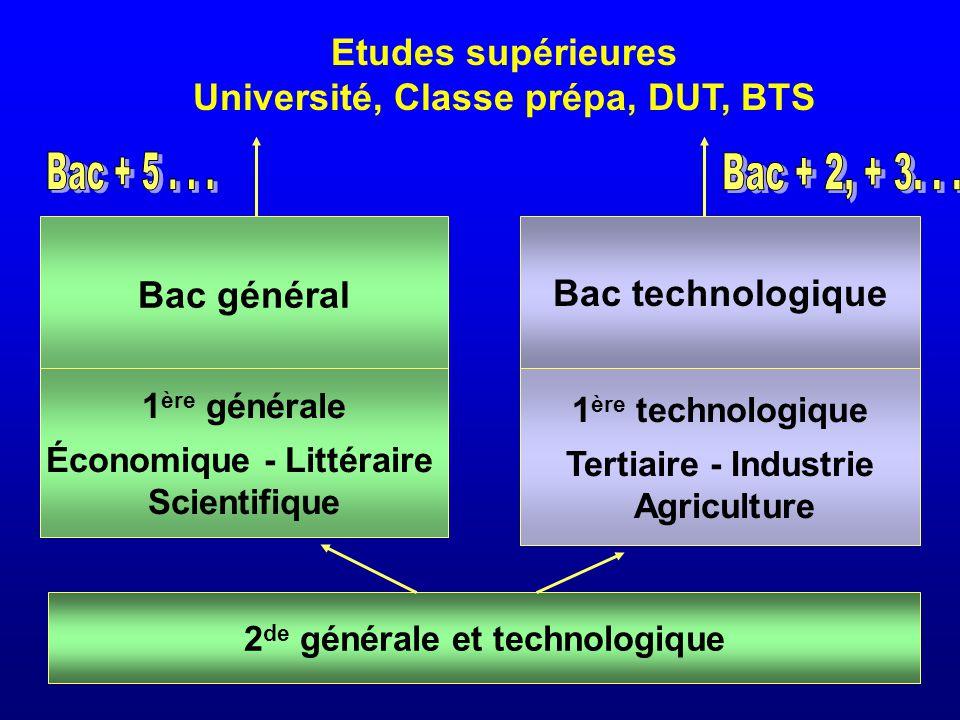 Université, Classe prépa, DUT, BTS