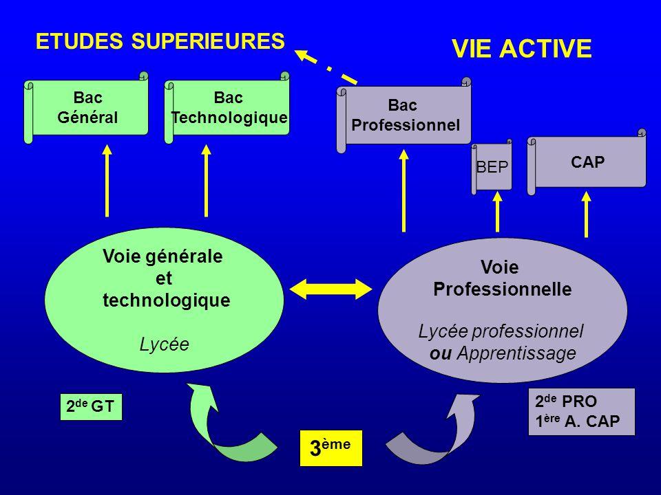 VIE ACTIVE ETUDES SUPERIEURES 3ème Voie générale et technologique