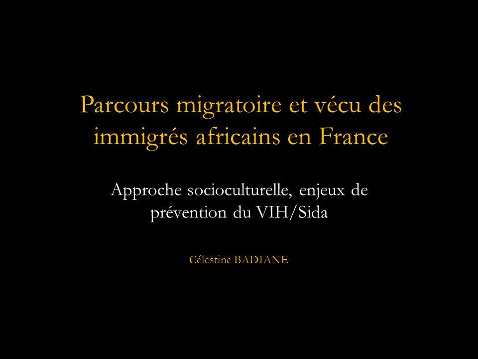 Parcours migratoire et vécu des immigrés africains en France