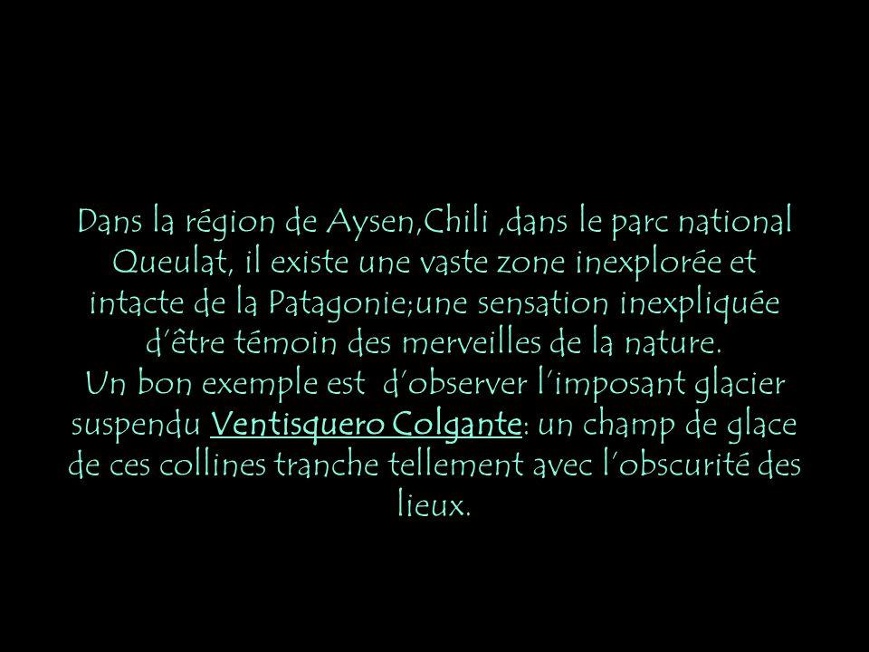 Dans la région de Aysen,Chili ,dans le parc national Queulat, il existe une vaste zone inexplorée et intacte de la Patagonie;une sensation inexpliquée d'être témoin des merveilles de la nature.