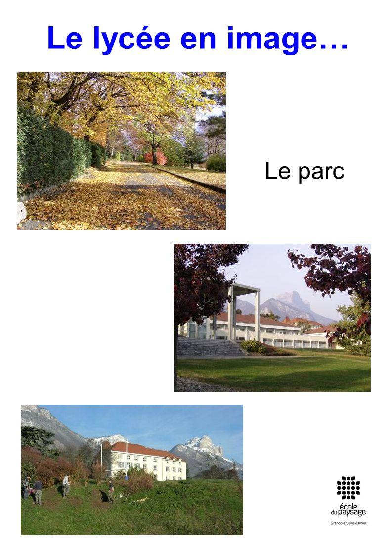 Le lycée en image… Le parc
