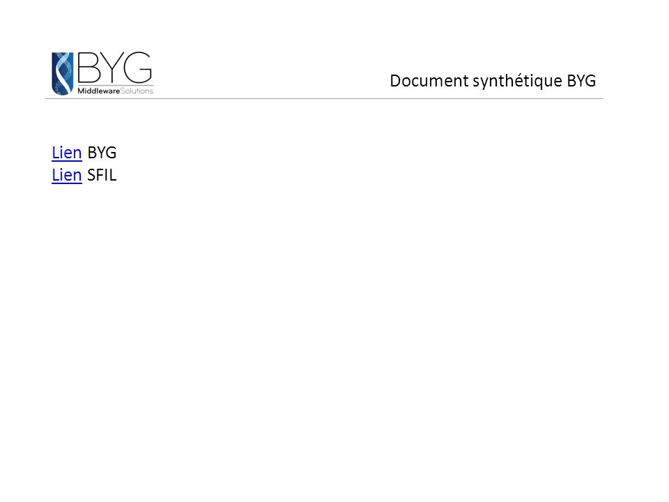 Document synthétique BYG