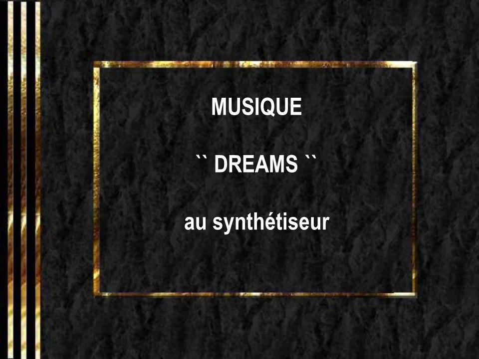 MUSIQUE `` DREAMS `` au synthétiseur
