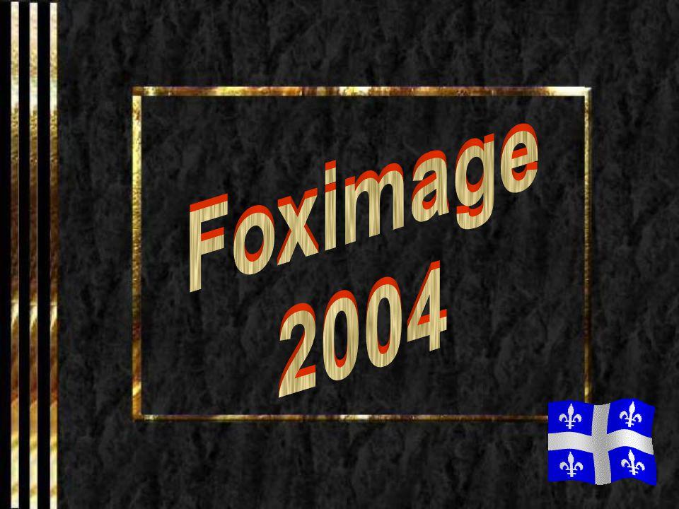 Foximage 2004