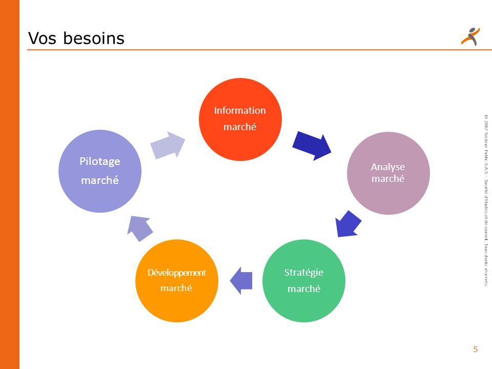 Vos besoins Pilotage Information Stratégie Analyse marché marché