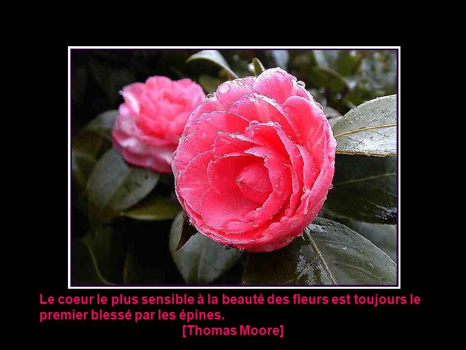 Le coeur le plus sensible à la beauté des fleurs est toujours le premier blessé par les épines.