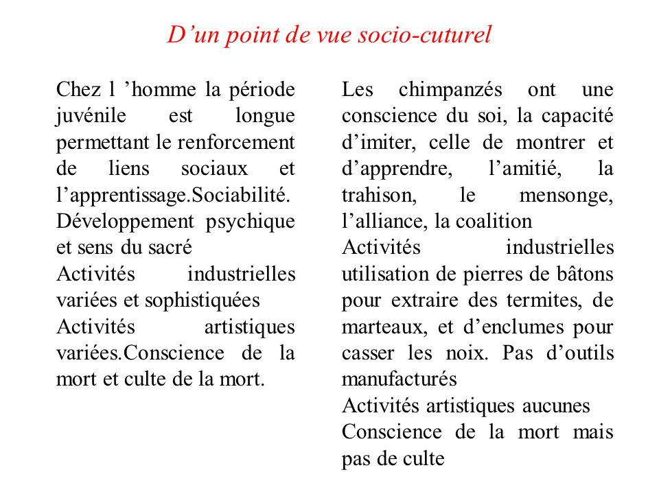 D'un point de vue socio-cuturel