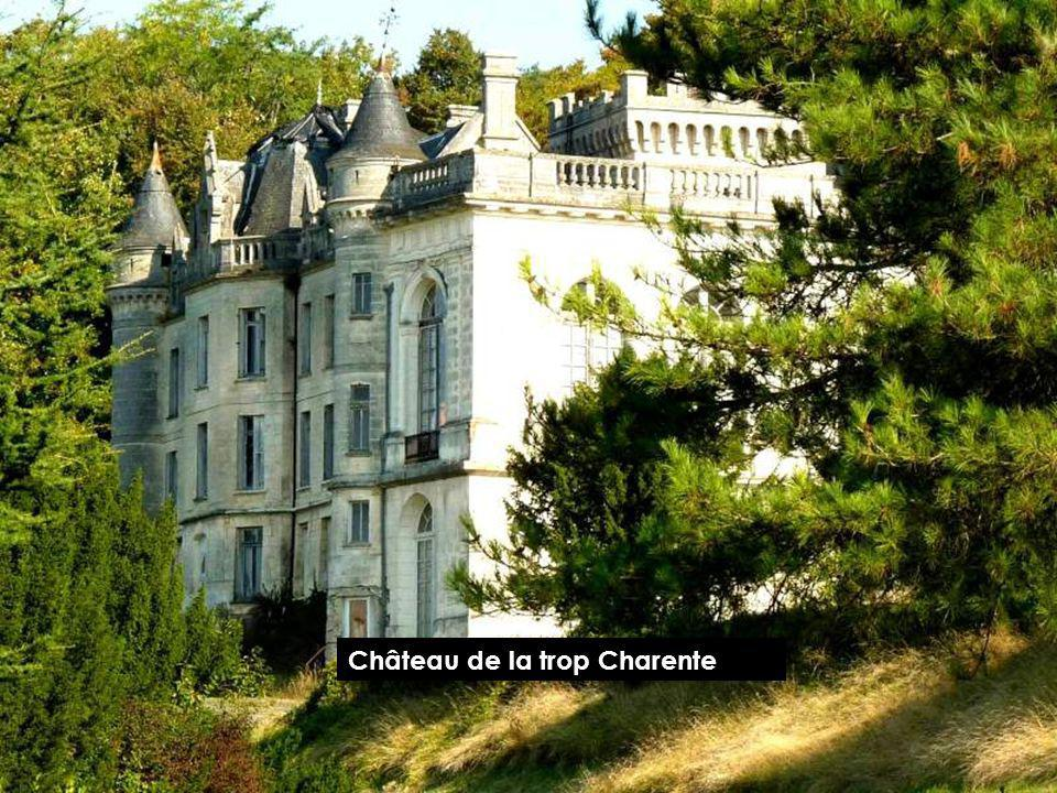 Château de la trop Charente