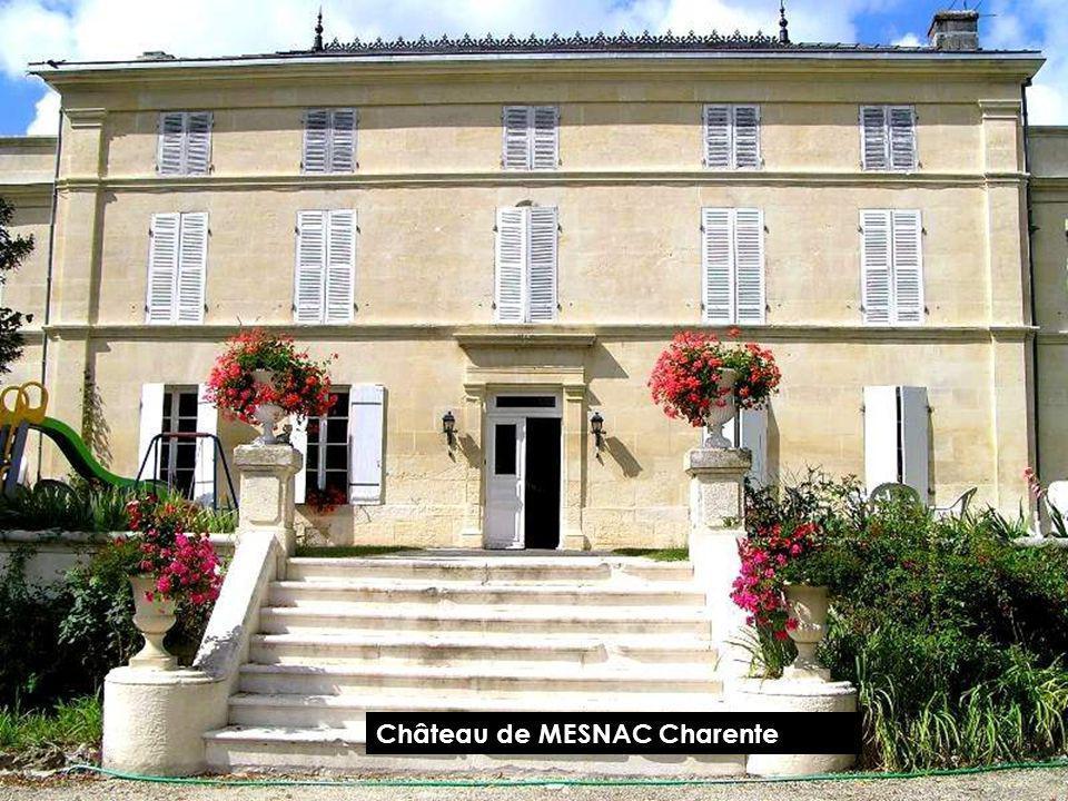 Château de MESNAC Charente