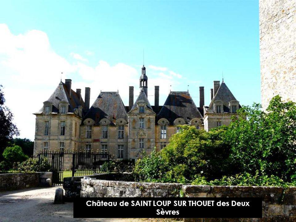Château de SAINT LOUP SUR THOUET des Deux Sèvres