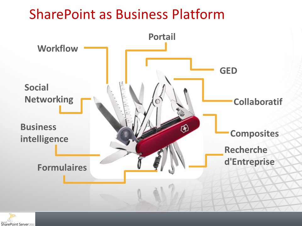 SharePoint as Business Platform
