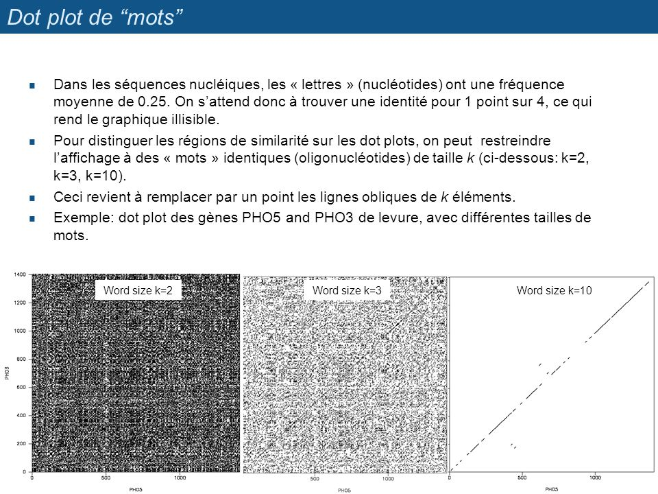 Dot plot de mots