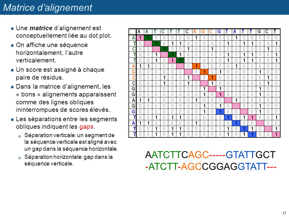 AATCTTCAGC-----GTATTGCT -ATCTT-AGCCGGAGGTATT---
