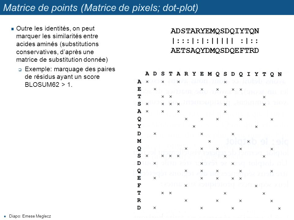 Matrice de points (Matrice de pixels; dot-plot)