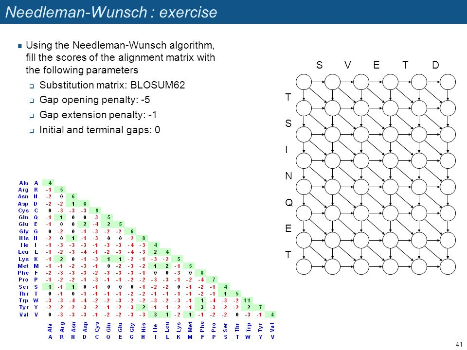 Needleman-Wunsch : exercise