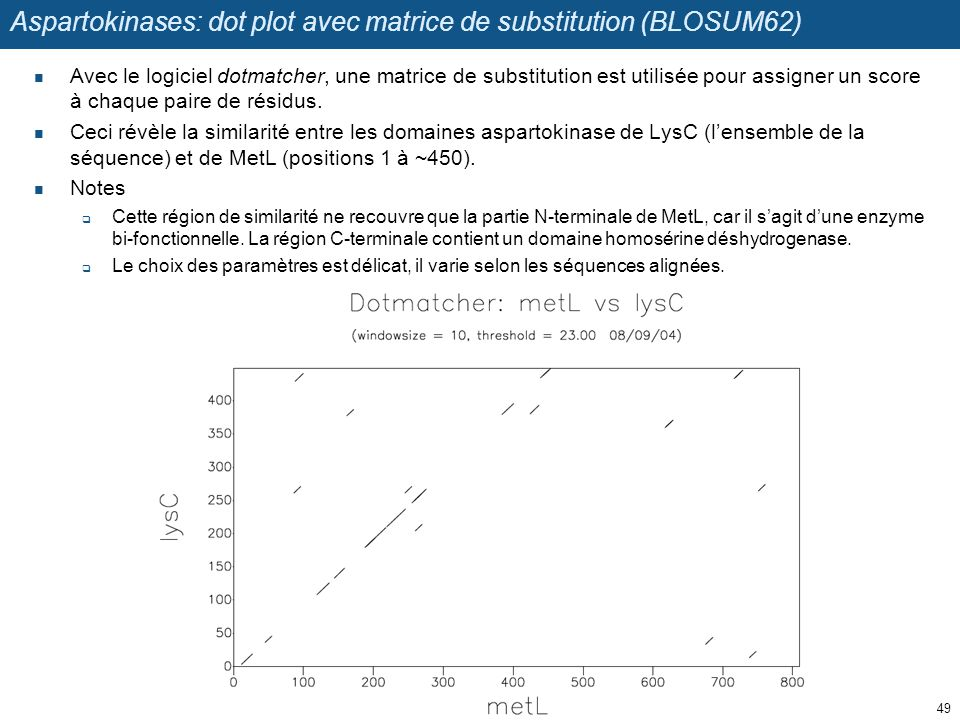 Aspartokinases: dot plot avec matrice de substitution (BLOSUM62)