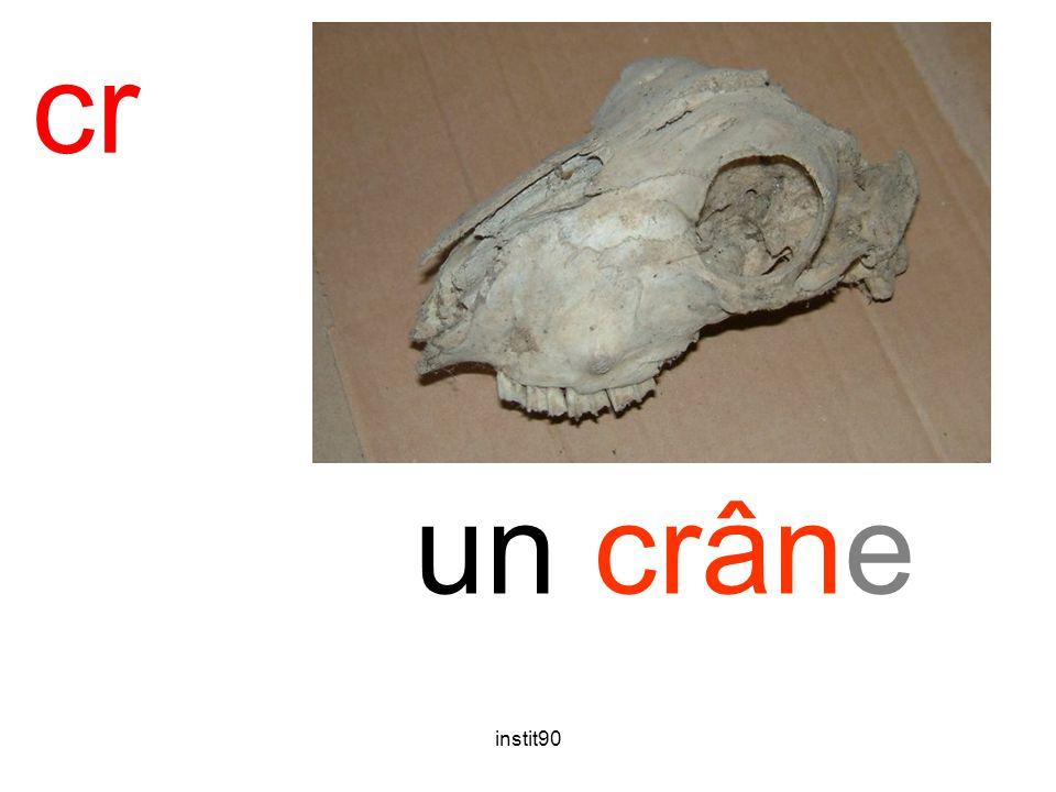 cr crâne un crâne instit90