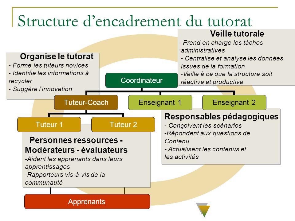 Structure d'encadrement du tutorat