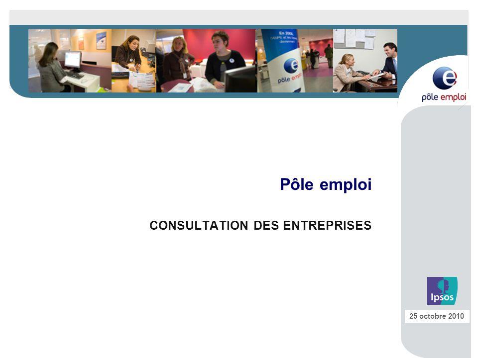 Pôle emploi CONSULTATION DES ENTREPRISES