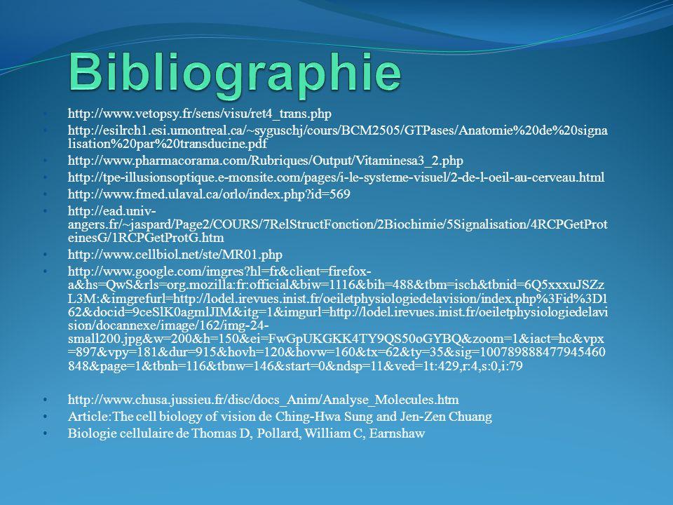 Bibliographie http://www.vetopsy.fr/sens/visu/ret4_trans.php