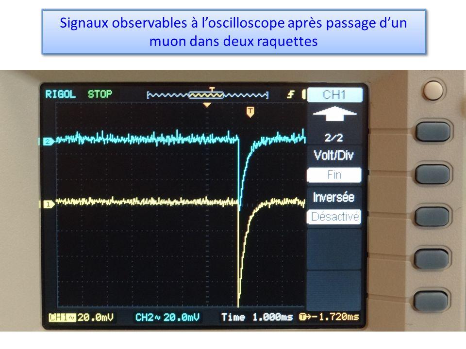 Signaux observables à l'oscilloscope après passage d'un muon dans deux raquettes