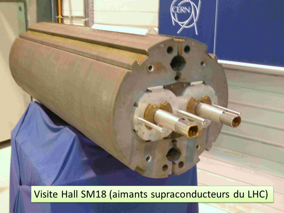 Visite Hall SM18 (aimants supraconducteurs du LHC)