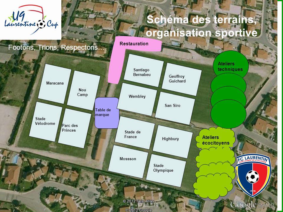 Schéma des terrains, organisation sportive