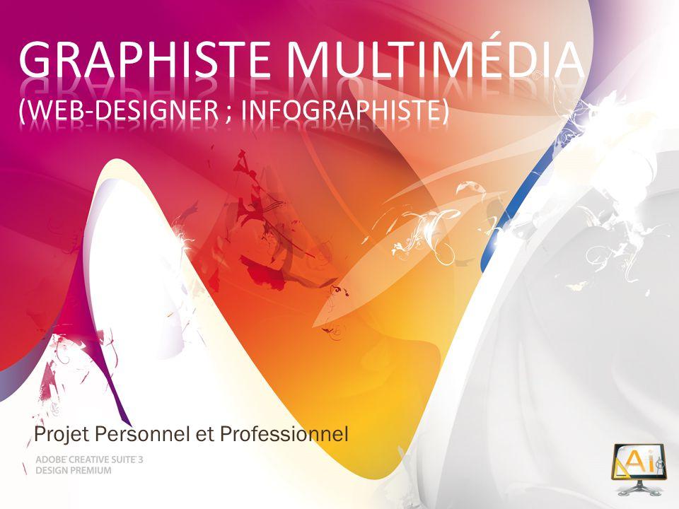 Graphiste multimédia (web-designer ; infographiste)