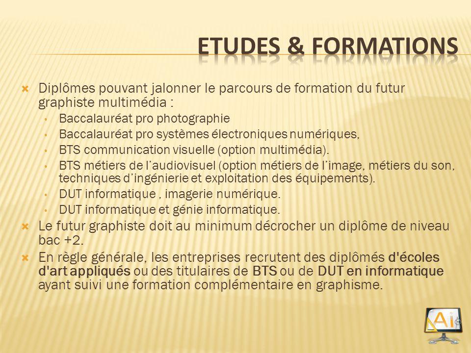 Etudes & Formations Diplômes pouvant jalonner le parcours de formation du futur graphiste multimédia :