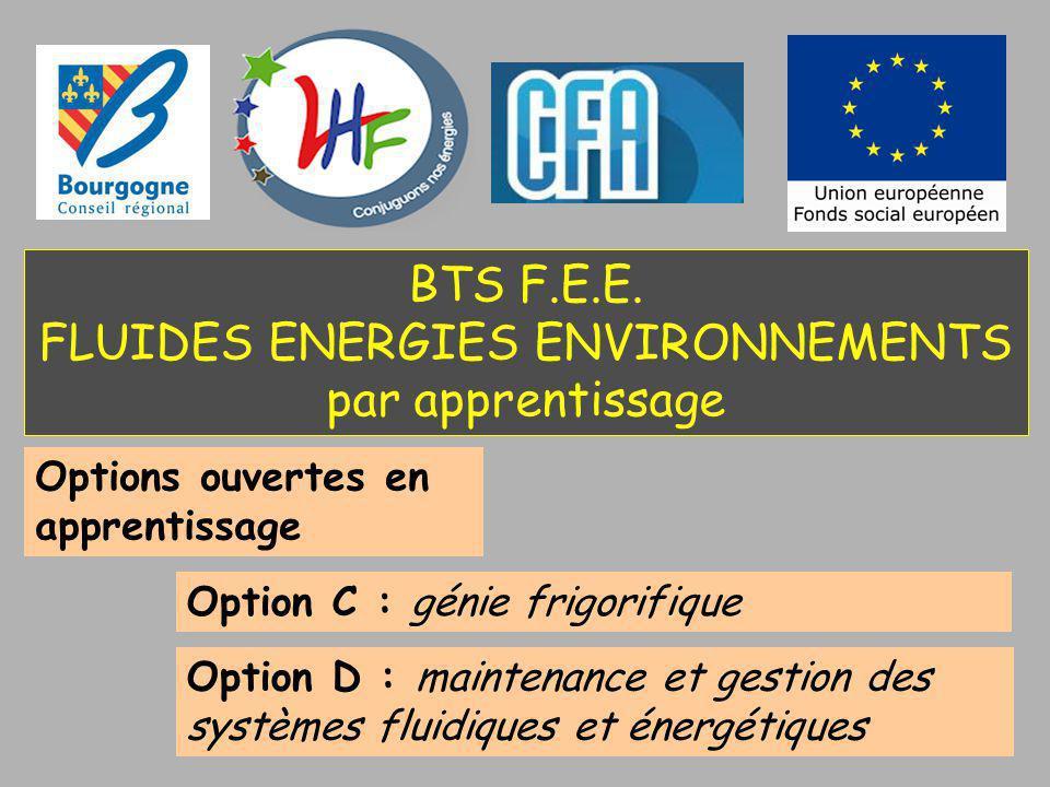 BTS F.E.E. FLUIDES ENERGIES ENVIRONNEMENTS