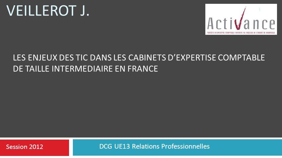 DCG UE13 Relations Professionnelles