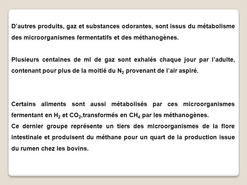 D'autres produits, gaz et substances odorantes, sont issus du métabolisme des microorganismes fermentatifs et des méthanogènes.