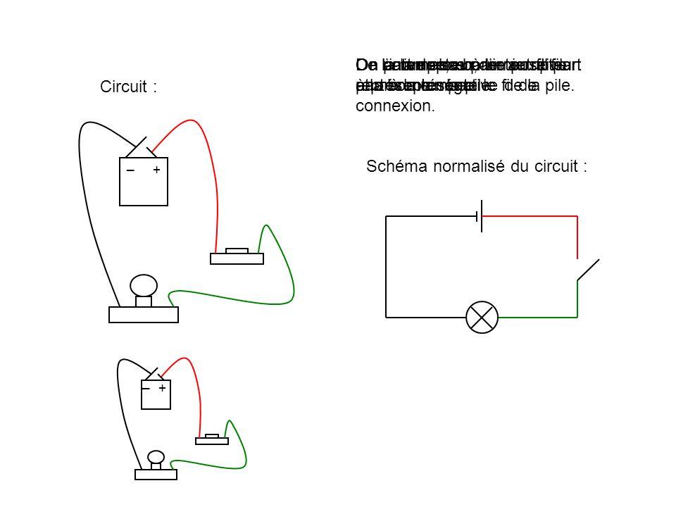De la lampe, un dernier fil part à la borne négative de la pile.