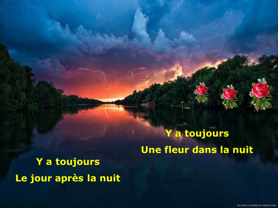 Y a toujours Une fleur dans la nuit Y a toujours Le jour après la nuit