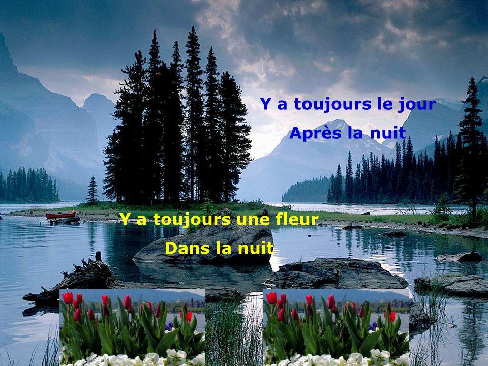 Y a toujours le jour Après la nuit Y a toujours une fleur Dans la nuit